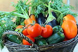 Mix fresh vegetables (carrots, eggplant, cucumbers, tomatoes) in a black wicker basket