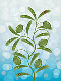 Floral background with olive branch