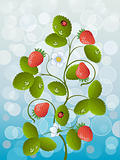 Floral background with strawberry