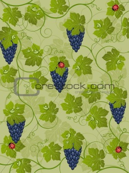 Floral background with vine