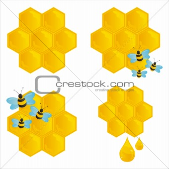 honeycombs with bees