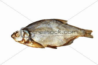 Foto of bream lying on white background