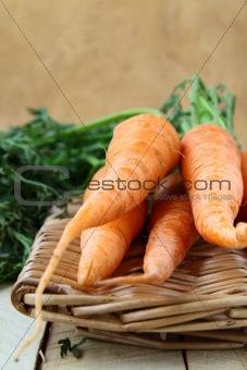 fresh baby carrots in a wicker basket