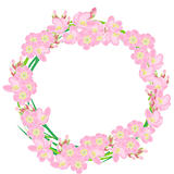 Pink wreath made of cherry flowers