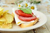 Sandwiches with baguette and salami with cheese and tomatoes