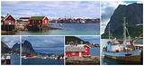 Collage of the Coastal Town of Reine, Lofoten, Norway