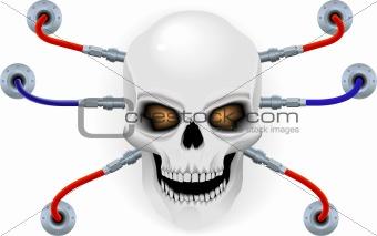 Skull the bio robot