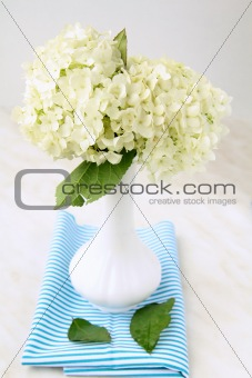 beautiful summer flowers in a vase