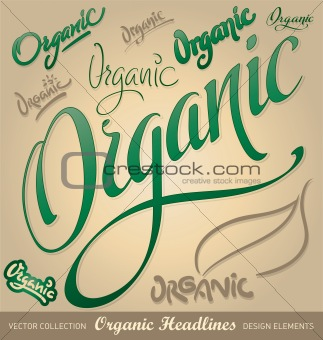 organic hand lettering set (vector)