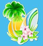summer insignia