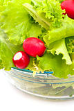 lettuce and radish