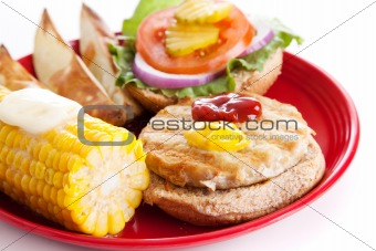 Delicious Healthy Turkey Burger