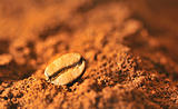 Macro coffee beans and ground coffee