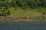 Red house at the raftsund