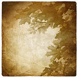 Vintage maple leaves background