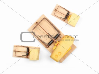 Three mouse traps with cheese