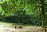 picnic place