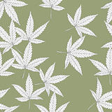 Cannabis leaves, seamless pattern.