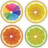 set of colorful citrus slices