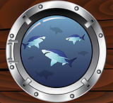 vector porthole and dangerous sharks
