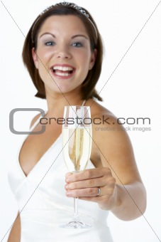 Portrait Of Bride Toasting With Wine Glass