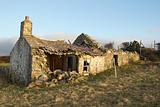 Derelict cottage.