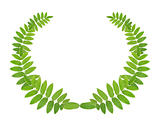 Green Wreath