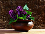 Branch of lilac in a ceramic vase.