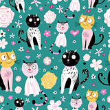 patterns of funny cats