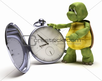 Tortoise with a classic pocket watch