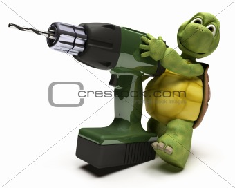 Tortoise with power drill