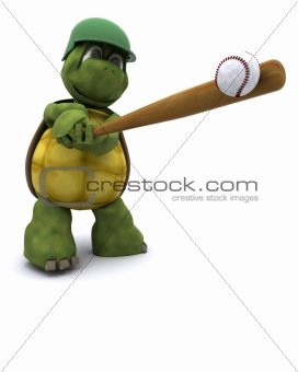 Tortoise playing basball