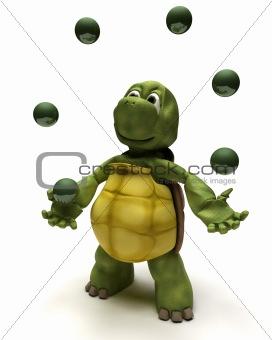 Tortoise juggling balls