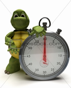 Tortoise with a traditional chrome stop watch