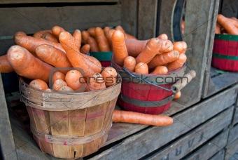 Carrots in baskets