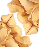 Fortune Cookie Background