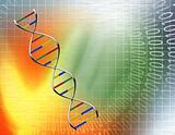 Data DNA