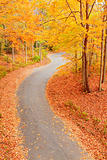 Winding alley in fall