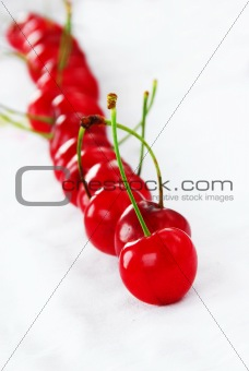 Appetizing red cherries row