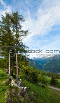 Alps summer view