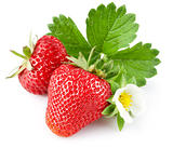 strawberry berry with green leaf and flower