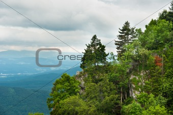 Beautiful mountains with lots of trees and clouds in background