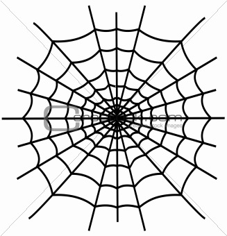 Black spiderweb isolated