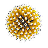 multitude pencil
