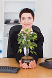 Businesswoman holding a plant