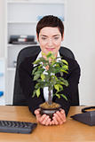 Businesswoman looking at a plant
