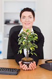 Portrait of a secretary looking at a plant