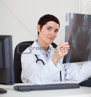 Focused female doctor holding a set of X-ray