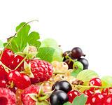 set fresh berries with green leaf