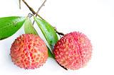 Lichi fruits